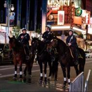 062_NYC 2012