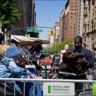 096_NYC 2012