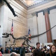 128_NYC 2012